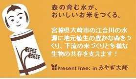 Present Tree in みやぎ大崎/ミズナラの苗木755本ご利用に感謝!