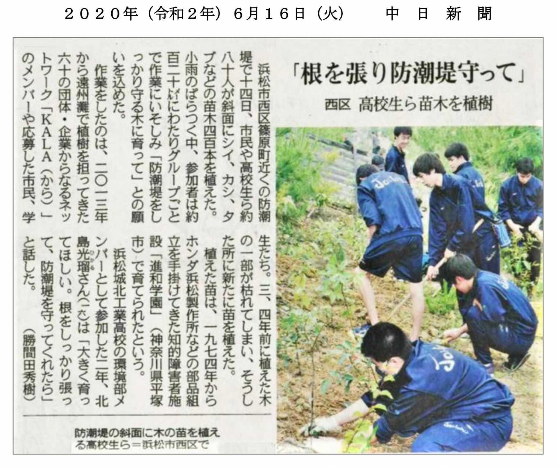 中日新聞に記事掲載/浜松の防潮林に進和学園の苗木を植樹!