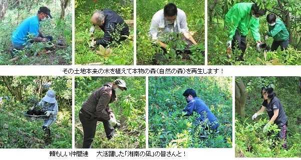 第18回湘南国際村めぐりの森植樹事業 ~ 分散実施で目標達成!~