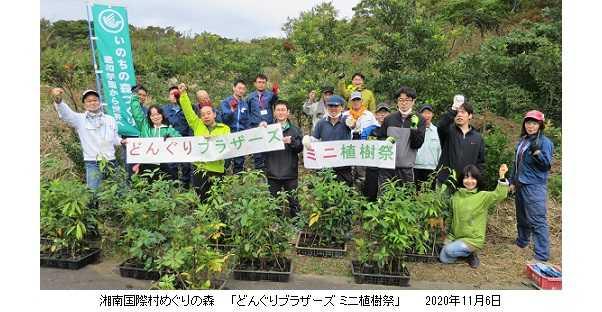 「どんぐりブラザーズ」大活躍!~秋の植樹・育樹活動に励む!~