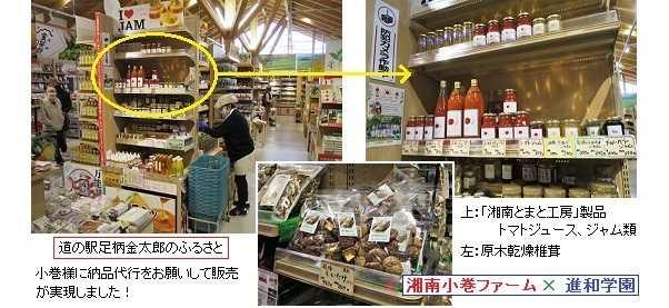 湘南小巻ファーム&湘南サンファミリー農園様との「農福連携」