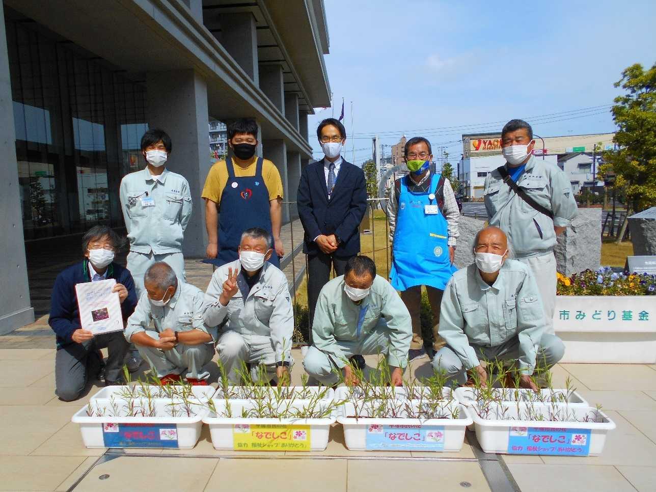 平塚市民の花『なでしこ』をお届けしました。
