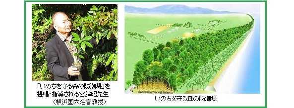 いのちを守る森の防潮堤/遠州灘(浜松・掛川)に苗木提供!